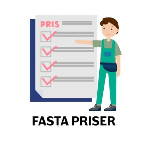hjälp med datorn - Fasta priser
